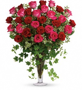 Dreaming in Pink - Long Stemmed Pink Roses in Adrian MI, Flowers & Such, Inc.