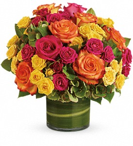 Blossoms in Vogue in Worcester MA, Herbert Berg Florist, Inc.
