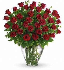 My Perfect Love - Long Stemmed Red Roses in Hampden ME, Hampden Floral