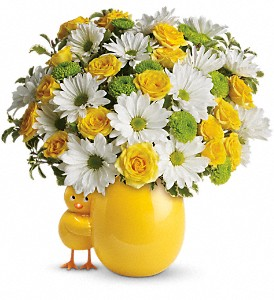 My Little Chickadee by Teleflora in Fredonia NY, Fresh & Fancy Flowers & Gifts