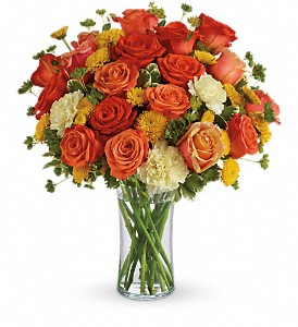 Citrus Kissed in Nutley NJ, A Personal Touch Florist