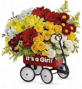 Baby's Wow Wagon by Teleflora - Girl in Middle Village NY, Creative Flower Shop