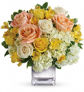 Teleflora's Sweetest Sunrise Bouquet in Stuart FL, Harbour Bay Florist