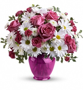 Teleflora's Pink Daisy Delight in Bowmanville ON, Bev's Flowers