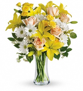 Teleflora's Daisies and Sunbeams in Peoria IL, Flowers & Friends Florist