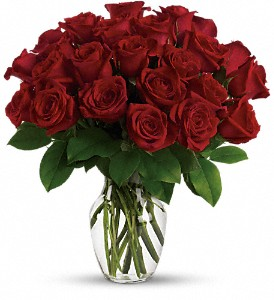 Enduring Passion - 12 Red Roses in Vero Beach FL, Always In Bloom Florist