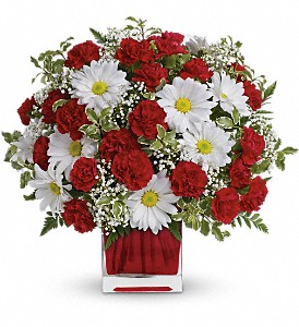Red And White Delight by Teleflora in San Leandro CA, East Bay Flowers