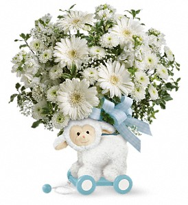 Teleflora's Sweet Little Lamb - Baby Blue in Chicago IL, Wall's Flower Shop, Inc.