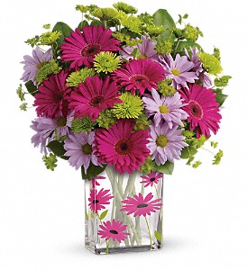 Teleflora's Thanks A Daisy Bouquet in Wolfeboro Falls NH, Linda's Flowers & Plants