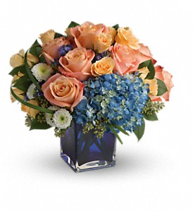 Teleflora's Modern Blush Bouquet in Tolland CT, Wildflowers of Tolland
