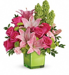 Teleflora's In Love With Lime Bouquet in Lewistown MT, Alpine Floral Inc Greenhouse