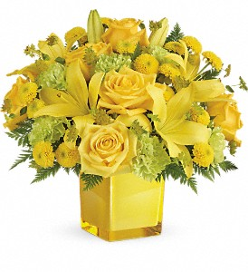 Teleflora's Sunny Mood Bouquet in Edmonton AB, Petals For Less Ltd.