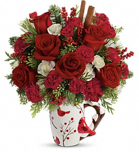 Send a Hug Christmas Cardinal by Teleflora in Weymouth MA, Bra Wey Florist