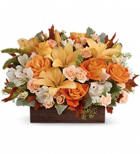 Teleflora's Fall Chic Bouquet in Edmonton AB, Petals For Less Ltd.