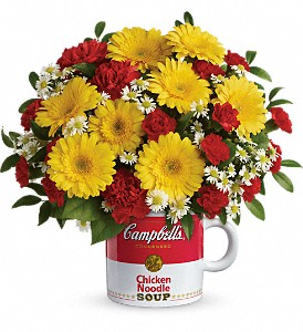 Campbell's Healthy Wishes by Teleflora in Big Rapids MI, Patterson's Flowers, Inc.