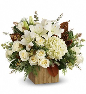 Teleflora's Snowy Woods Bouquet in flower shops MD, Flowers on Base