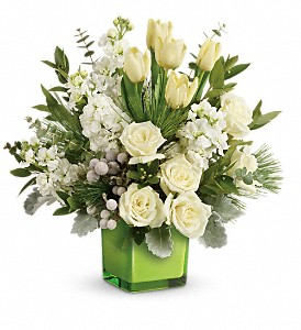 Teleflora's Winter Pop Bouquet in Tecumseh MI, Ousterhout's Flowers
