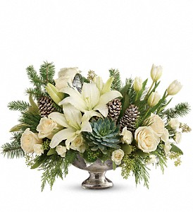 Teleflora's Winter Wilds Centerpiece in Jupiter FL, Anna Flowers