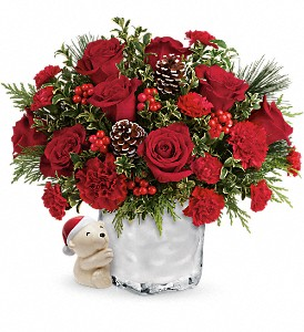 Send a Hug Winter Cuddles by Teleflora in Greensboro NC, Botanica Flowers and Gifts
