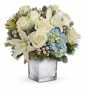 Teleflora's Silver Snow Bouquet in Oakland MD, Green Acres Flower Basket