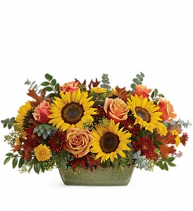 Teleflora's Sunflower Farm Centerpiece in flower shops MD, Flowers on Base