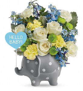 Teleflora's Hello Sweet Baby - Blue in Big Rapids MI, Patterson's Flowers, Inc.