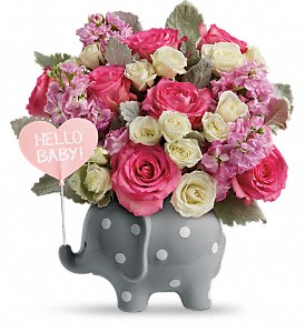 Teleflora's Hello Sweet Baby - Pink in Oklahoma City OK, Capitol Hill Florist and Gifts