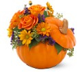 Teleflora's Pumpkin Patch Bouquet in Bakersfield CA White Oaks Florist