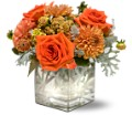 Teleflora's Perfect Orange Harmony in Boynton Beach FL Boynton Villager Florist