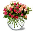 Teleflora's Crimson & Coral Roses in Bend OR All Occasion Flowers & Gifts