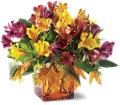 Teleflora's Autumn Alstroemeria Bouquet in Oklahoma City OK Array of Flowers & Gifts