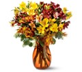 Alstroemeria Brights in Oklahoma City OK Array of Flowers & Gifts