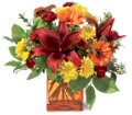 Teleflora's Autumn Awe in Oklahoma City OK Array of Flowers & Gifts