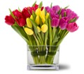 Teleflora's Tulips Together in Salt Lake City UT Especially For You