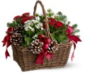 Christmas Garden Basket in Sayville NY Sayville Flowers Inc