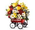 Teleflora's Baby's First Wagon - Girl in DeKalb IL Glidden Campus Florist & Greenhouse