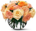 Perfect Pastel Roses in San Clemente CA Beach City Florist