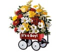 Teleflora's Baby's First Wagon - Boy in DeKalb IL Glidden Campus Florist & Greenhouse