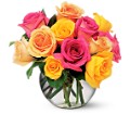 Multi-Colored Roses in Roselle Park NJ Donato Florist