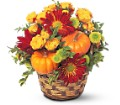 Hint of Fall in Weymouth MA Bra Wey Florist