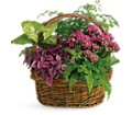 Secret Garden Basket in New York NY Fellan Florists Floral Galleria