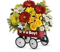 Baby's Wow Wagon by Teleflora - Boy in Springfield OH Netts Floral Company and Greenhouse