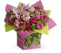 Teleflora's Pretty Pink Present in Los Angeles CA Angie's Flowers