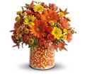 Teleflora's Candy Cornie in Bayonne NJ Blooms For You Floral Boutique