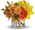 Sunny Siesta in Highlands Ranch CO TD Florist Designs