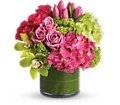 New Sensations in Jersey City NJ Entenmann's Florist