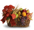 Fresh Picked in Sayreville NJ Sayrewoods  Florist