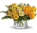 The Sun'll Come Out by Teleflora in Boynton Beach FL Boynton Villager Florist