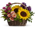 Picnic in the Park in Mount Morris MI June's Floral Company & Fruit Bouquets