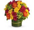 Blossoms in Vogue in Jacksonville FL Hagan Florists & Gifts